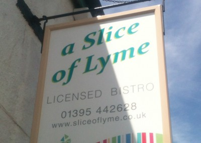 ds_a slice of lyme